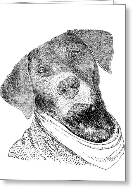 Best Friend Drawings Greeting Cards - Mans best friend Greeting Card by Jack Pumphrey