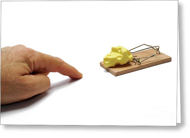 Swiss Cheese Greeting Cards - Mans hand about to catch cheese on mousetrap Greeting Card by Sami Sarkis
