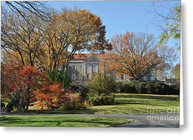 Mansion in the woods Greeting Card by Denise Ellis