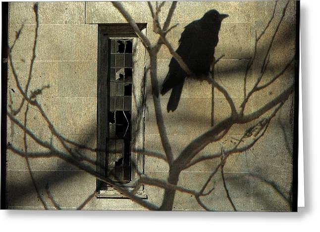 Many Shadows Greeting Card by Gothicolors Donna Snyder
