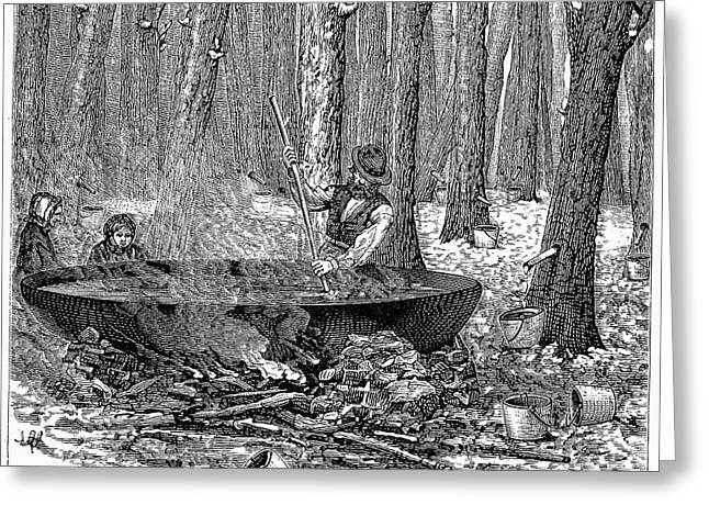 Stir Greeting Cards - Maple Syrup, 1877 Greeting Card by Granger