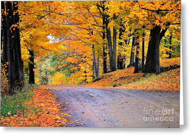 Best Sellers -  - Scenic Drive Greeting Cards - Maples of Rupert Vermont Greeting Card by Thomas Schoeller