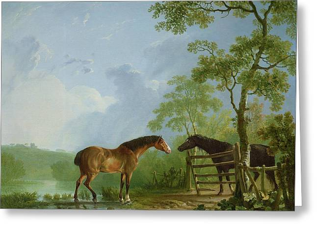 Mare Greeting Cards - Mare and Stallion in a Landscape Greeting Card by Sawrey Gilpin