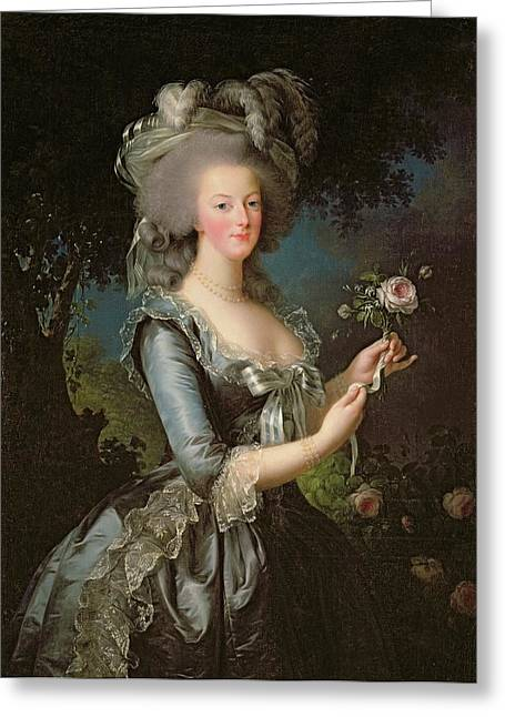 Lace Greeting Cards - Marie Antoinette Greeting Card by Elisabeth Louise Vigee Lebrun