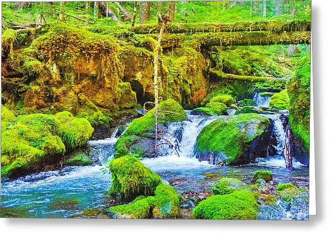 Hike Greeting Cards - Marmot Creek Waterfalls Greeting Card by Alvin Kroon