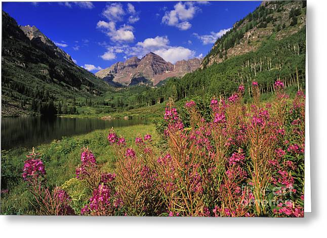 Hematite Greeting Cards - Maroon Bells - FM000018 Greeting Card by Daniel Dempster