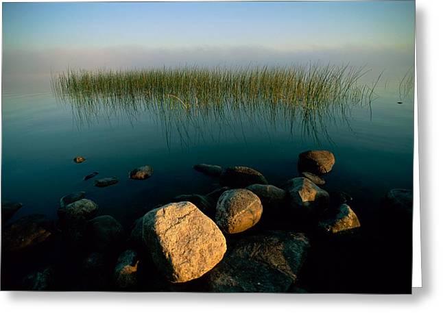 Voyageurs Greeting Cards - Marsh Grass And Rocks Seemingly Float Greeting Card by Richard Olsenius