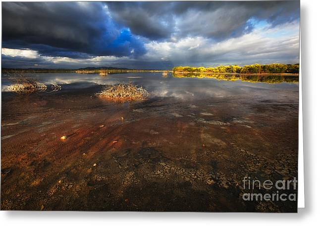 Colorful Cloud Formations Greeting Cards - Marsh Landscape of Cabo Rojo Greeting Card by George Oze