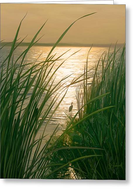 Sue Brehant Greeting Cards - Marsh Sunset Greeting Card by Sue  Brehant