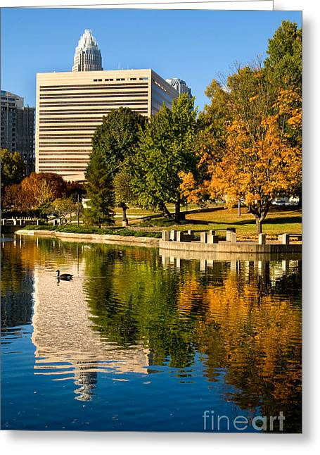 Pond In Park Greeting Cards - Marshall Park Greeting Card by Patrick Schneider