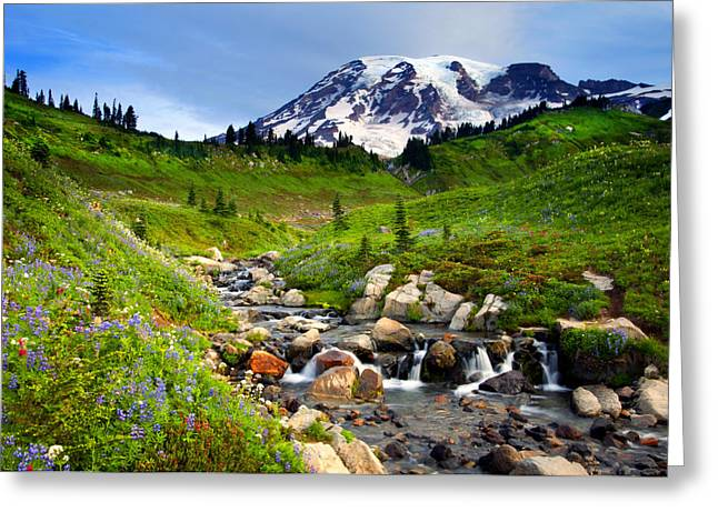 Mt Photographs Greeting Cards - Martha Creek Wildflowers Greeting Card by Mike  Dawson