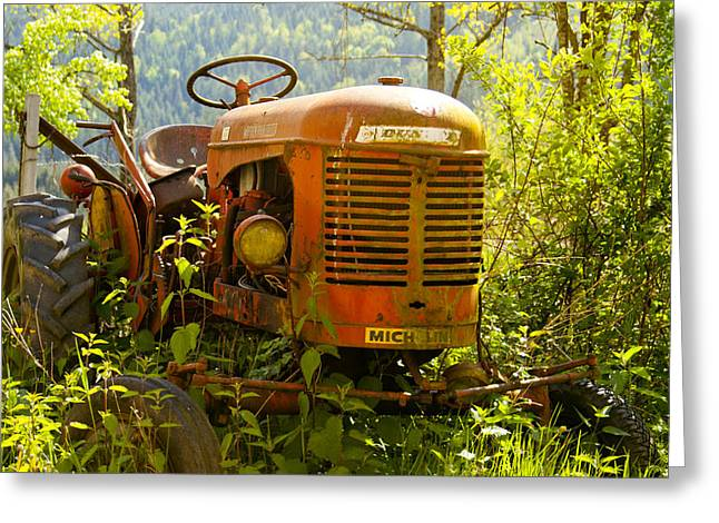 Overgrown Greeting Cards - Massey Ferguson Tractor Greeting Card by Nomad Art And  Design