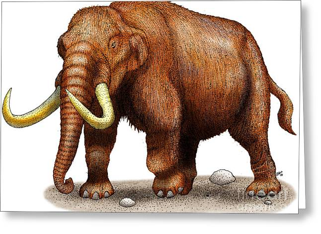Mastodon Greeting Card by Roger Hall and Photo Researchers