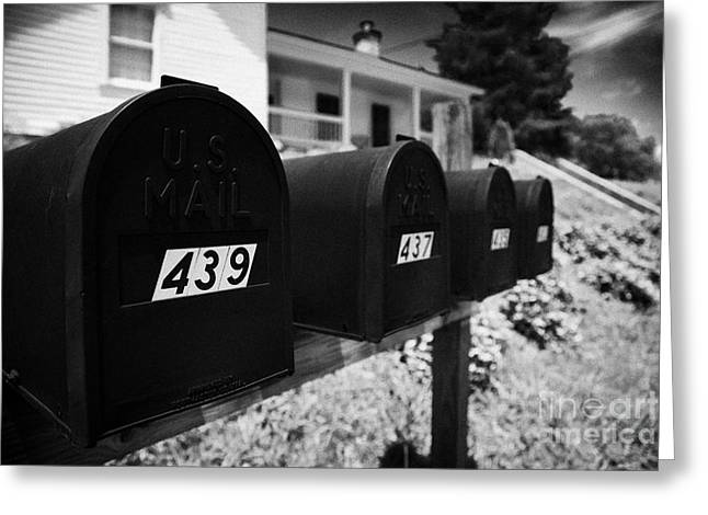 Us Postal Service Greeting Cards - matt black american private mailboxes in front of houses Lynchburg tennessee usa Greeting Card by Joe Fox