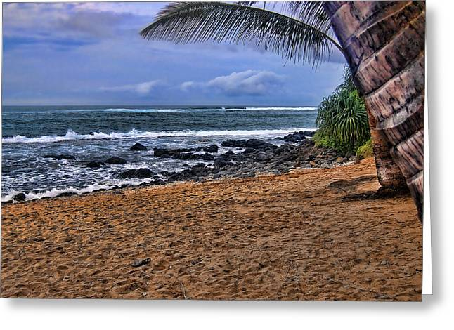 ; Maui Greeting Cards - Maui Beach Greeting Card by Jon Berghoff