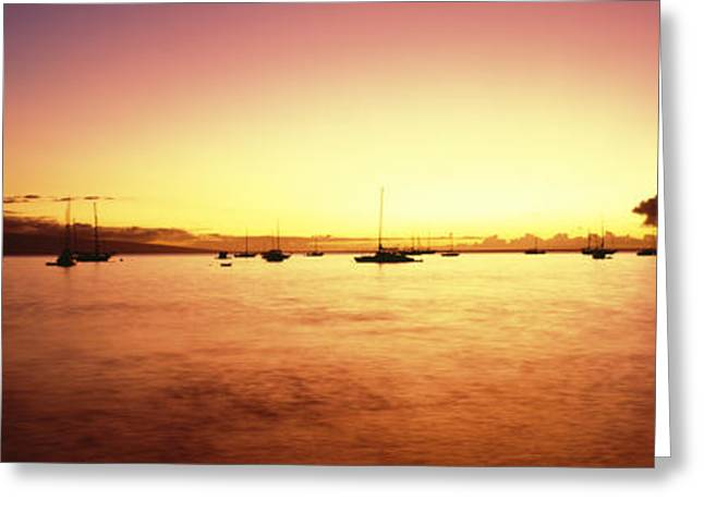 Docked Sailboat Greeting Cards - Maui Boat Harbor Silhouette Greeting Card by Carl Shaneff - Printscapes