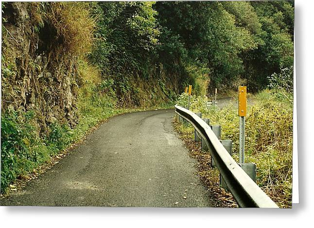 Maui Highway Greeting Card by Marilyn Wilson