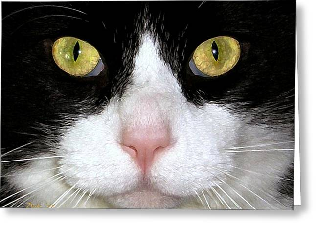 Photo Of Cat Greeting Cards - Max Greeting Card by Dale   Ford