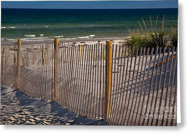 Eastern American Beach Grass Greeting Cards - Mayflower Beach Greeting Card by Susan Cole Kelly