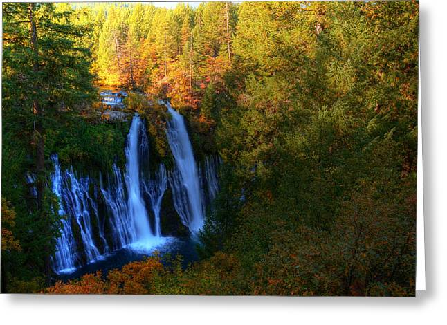 Fall Photographs Greeting Cards - McArthur Burney Falls Greeting Card by Kelly Wade