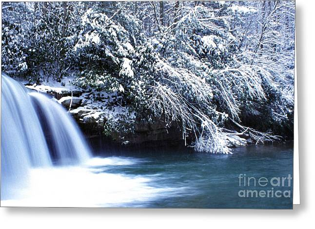 Mccoy Photographs Greeting Cards - McCoy Falls Birch River West Virginia Greeting Card by Thomas R Fletcher