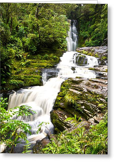 Mclean Greeting Cards - McLean Falls in the Catlins Greeting Card by Ulrich Schade