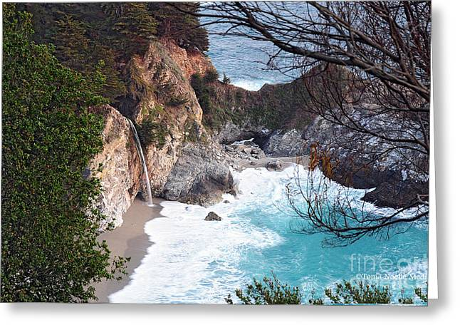Big Sur Ca Greeting Cards - McWay Falls in Spring Greeting Card by Tonia Noelle