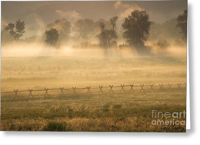 Salmon River Idaho Greeting Cards - Meadow Light Greeting Card by Idaho Scenic Images Linda Lantzy