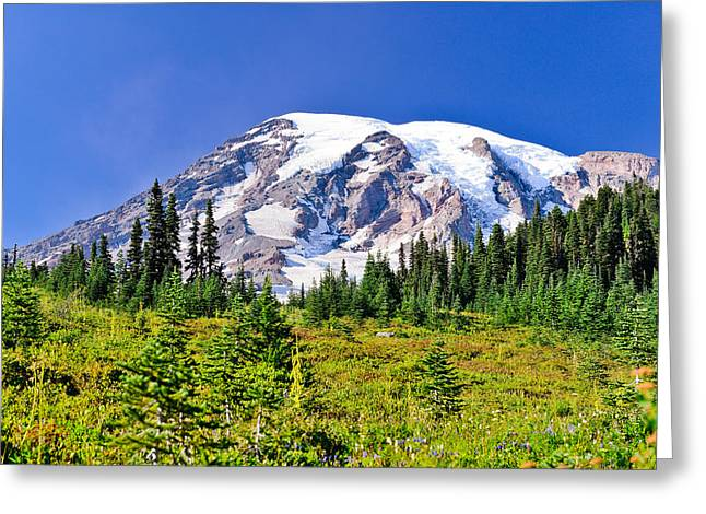 Landscape Art Greeting Cards - Meadows Meet Glaciers Greeting Card by Greg Norrell