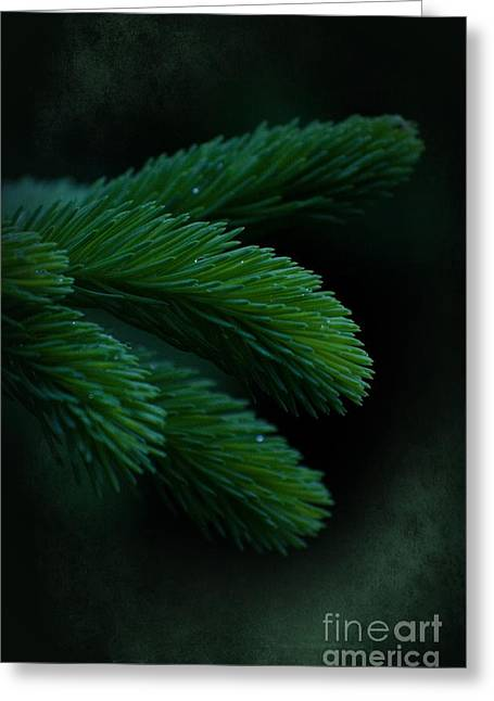 Reach Greeting Cards - Measure Of Desire Greeting Card by The Stone Age