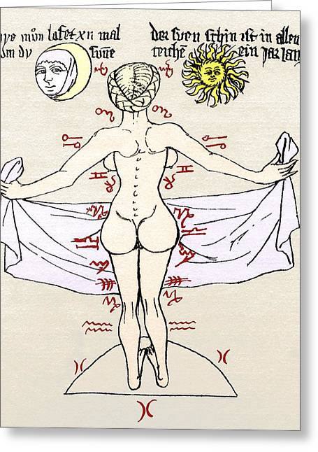 Historical Images Greeting Cards - Medical Zodiac, 15th Century Diagram Greeting Card by Sheila Terry