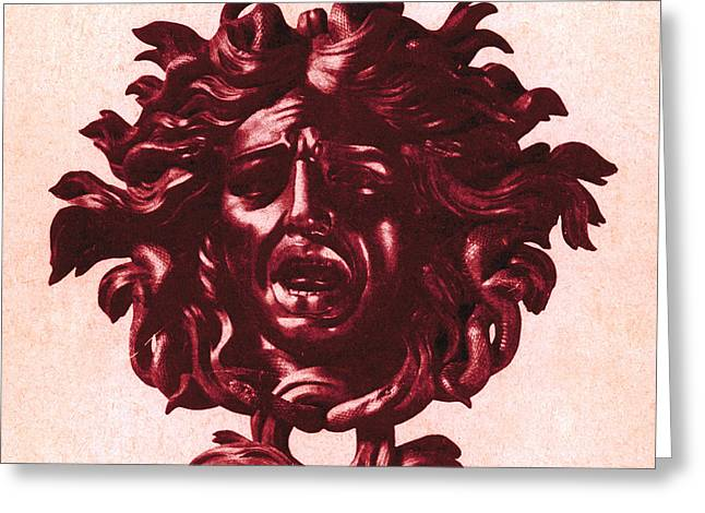 Medusa Greeting Cards - Medusa Head Greeting Card by Photo Researchers