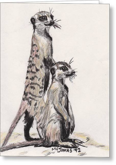 Marqueta Graham Greeting Cards - Meerkats Greeting Card by Marqueta Graham