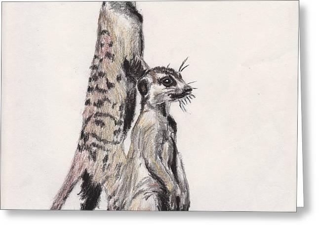 Meerkats Greeting Card by Marqueta Graham