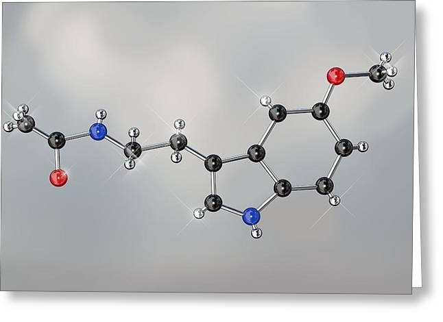 Molecular Model Greeting Cards - Melatonin Hormone Molecule Greeting Card by Miriam Maslo