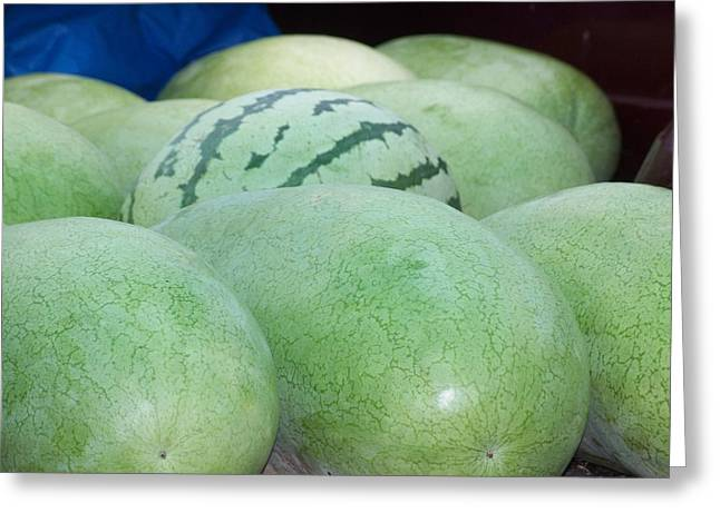 Kay Sawyer Greeting Cards - Melons Greeting Card by Kay Sawyer