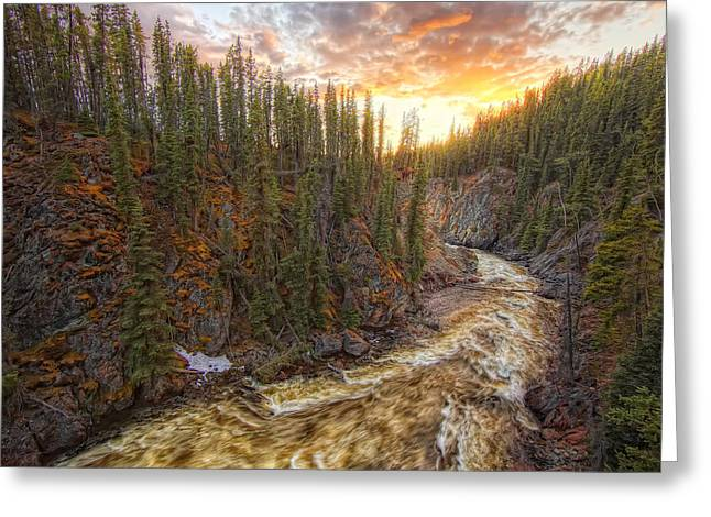 Morley Greeting Cards - Meltwater Raging Through The Morley Greeting Card by Robert Postma