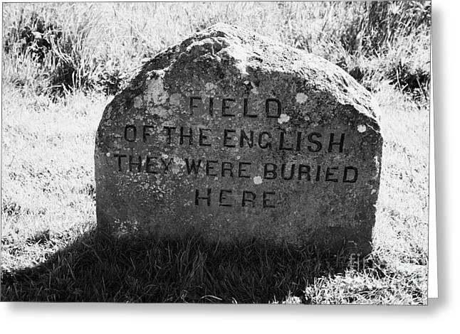 Battlefield Site Greeting Cards - memorial stone for the dead english on Culloden moor battlefield site highlands scotland Greeting Card by Joe Fox