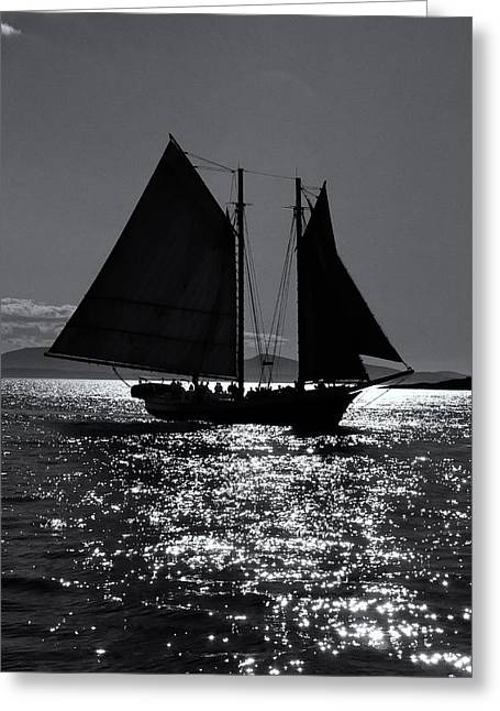 Schooner Greeting Cards - Mercantile Greeting Card by Fred LeBlanc
