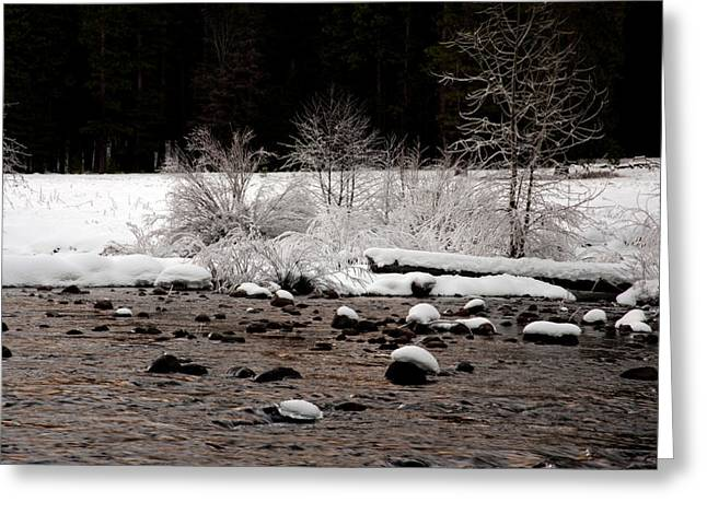 Yosemite Creek Greeting Cards - Merced River in Winter Greeting Card by Lee Chon