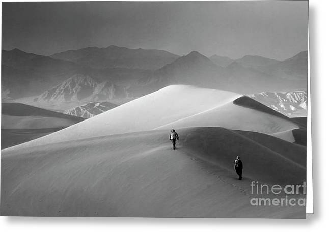 Mountains Of Sand Greeting Cards - Death Valley Mesquite Dunes 7 Greeting Card by Bob Christopher