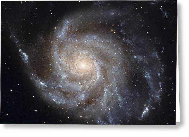 Constellations Photographs Greeting Cards - Messier 101, The Pinwheel Galaxy Greeting Card by Stocktrek Images