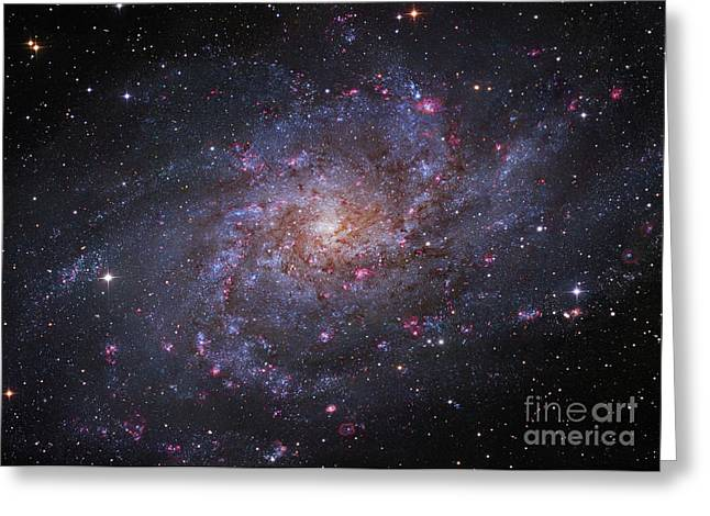 Interstellar Space Photographs Greeting Cards - Messier 33, Spiral Galaxy In Triangulum Greeting Card by Robert Gendler