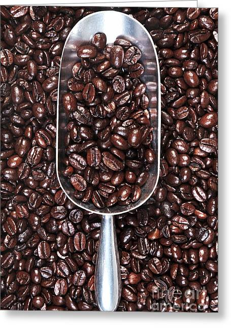 Metal Scoop Full Of Coffee Beans Greeting Card by Richard Thomas