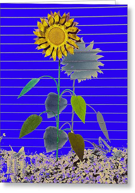 Metal Art Greeting Cards - Metal Sunflower Greeting Card by James Steele