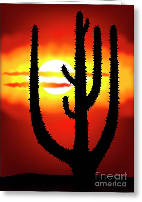 Recently Sold -  - Gloaming Greeting Cards - Mexico sunset Greeting Card by Michal Boubin