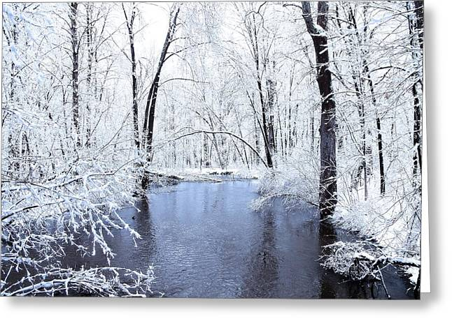 White River Greeting Cards - Michgan Winter 10 Greeting Card by Scott Hovind