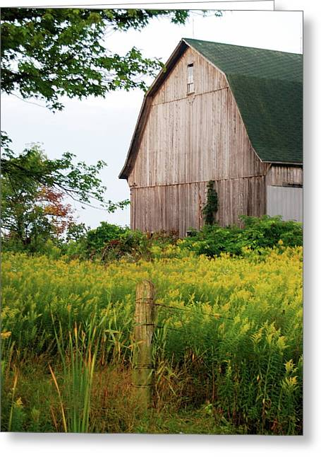 Old Fence Post Greeting Cards - Michigan Barn Greeting Card by Michael Peychich