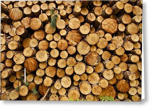 Michigan Lumber Greeting Card by Benjamin Collins