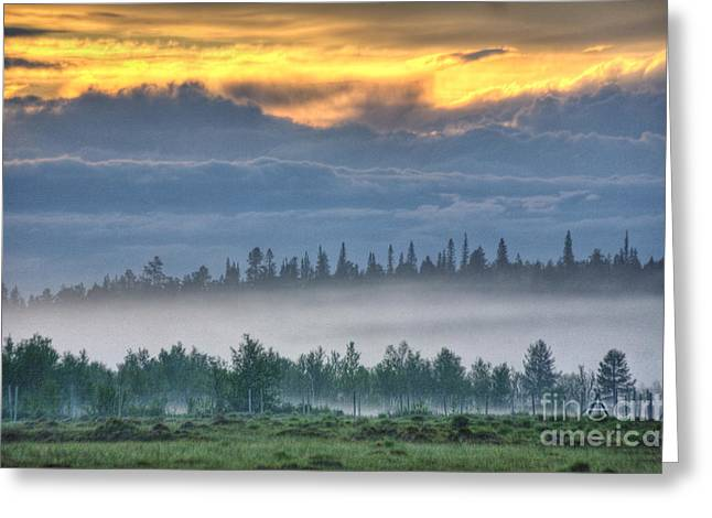 Mid Summer Morning Greeting Cards - Mid Summer Nights  Fog Greeting Card by Heiko Koehrer-Wagner